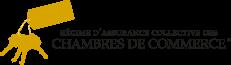 Devenir membre utilitaires chambre de commerce du for Chambre de commerce du montreal metropolitain